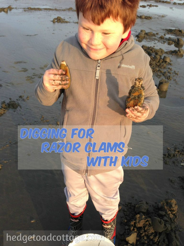 Successful razor clam digging with kids hedgetoad cottage for At what age do you need a fishing license